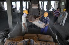 Cement consumption up year-on-year