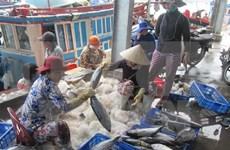 Vietnam targets over 1.2 mln tonnes of fish in Oct-Mar season