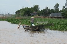 Mekong Delta faces water shortage