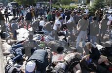 Vietnam condemns terrorist bombings in Turkey