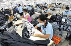 TPP to bring positive economic growth for Vietnam: agencies