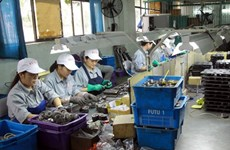 Indian businesses eye investment opportunities in Nam Dinh