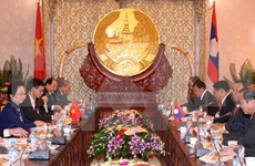 Vietnam, Laos commit to boosting ties