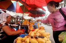 Philippines' export turnover down in first half of 2015