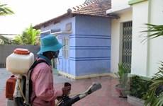 Hanoi: Drastic measures needed to end dengue fever