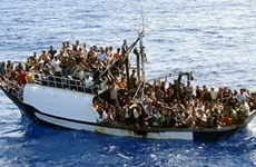 Vietnam attends meeting on migration in Turkey