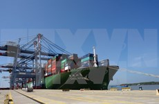 Southern Cai Mep port receives super freighter