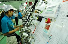 Japanese firms seek investment opportunity in Nam Dinh
