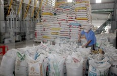 Rice market gains momentum