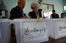 Myanmar opens door to international observers during election