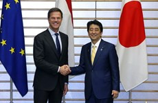 Japan, Netherlands share concern over East Sea tensions