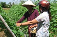 ASEAN can boost agri-industry through empowerment of women: FAO