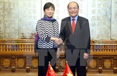 Vietnamese, Chinese friendship associations urged to forge links