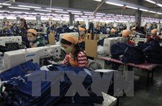 Belgian businesses expand investment in Vietnam