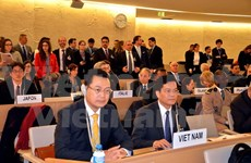 Vietnam actively contributes to UNHRC's efforts: Diplomat