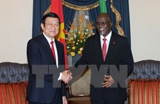 Vietnamese, Tanzanian Presidents hold talks
