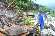 Workshop promotes disaster management in Mekong Delta