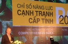 Da Nang leads in provincial competitiveness index 2015