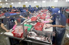 Vietnam's aquatic exports up 1.7 percent in Q1