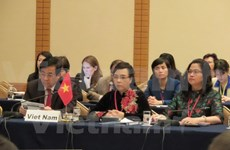 Vietnam to works harder on antimicrobial resistance: Minister