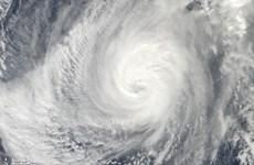 Typhoon Nida hits south China