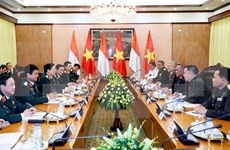 Vietnam, Indonesia rejoice at thriving defence relations