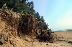 Khanh Hoa tackles coastal erosion