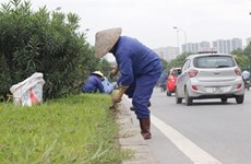 Hanoi to cut 6,000 gardening jobs