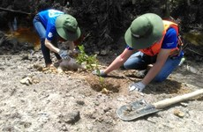 WWF, Intel start wetland reforestation project