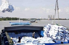 Rice exports expected to fall sharply this year