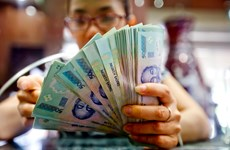Reference exchange rate goes down 10 VND