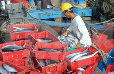 Constant supervision needed in fish death-related compensation