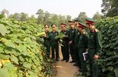 Vietnam, Laos armies exchange security defence experience