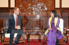 Vice President meets UK Prince
