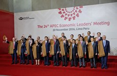 APEC Leaders' Declaration released