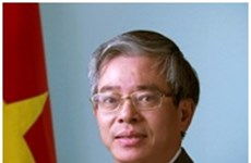 Vietnam, US aim for stronger future partnership: ambassador
