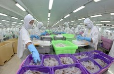 Agro-fishery-forestry export to be boosted
