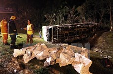 Cambodia bus accident claims at least 12 lives