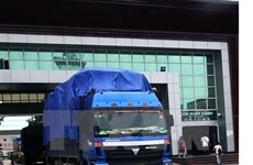 Export-import inspection exposes flaws