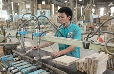 Over 1-trillion-VND MDF factory built in Bac Kan