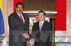 Vietnamese, Venezuelan Presidents hold talks