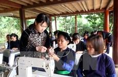 Various activities to celebrate Vietnamese women's day