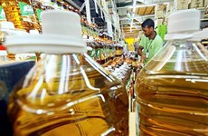 Indonesia, Malaysia to establish palm oil council