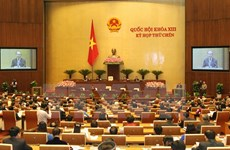Vietnam, Indonesia share law making experience