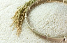 Public-private partnership in rice value chain discussed