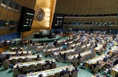 Vietnam welcomes UN resolution calling end to embargo on Cuba