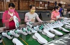 Dong Nai posts record-high footwear export