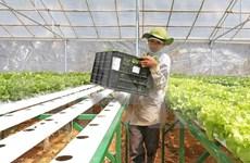 DPRK seeks investment opportunities in Ha Nam