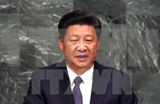 Chinese leader to pay State visit to Vietnam in November