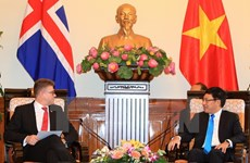 Deputy PM receives Icelandic foreign minister